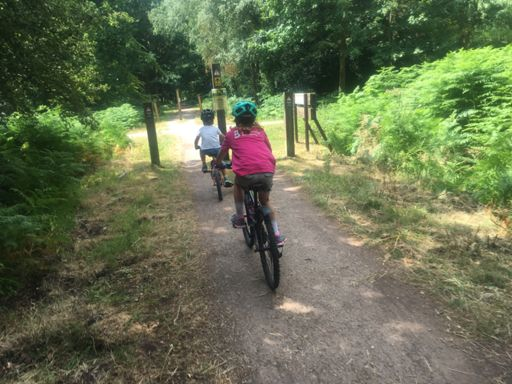 Andy and Izzy cycling in the Forest of Dean