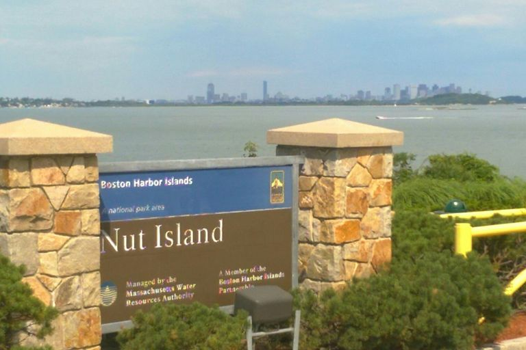 Boston skyline from Nut Island