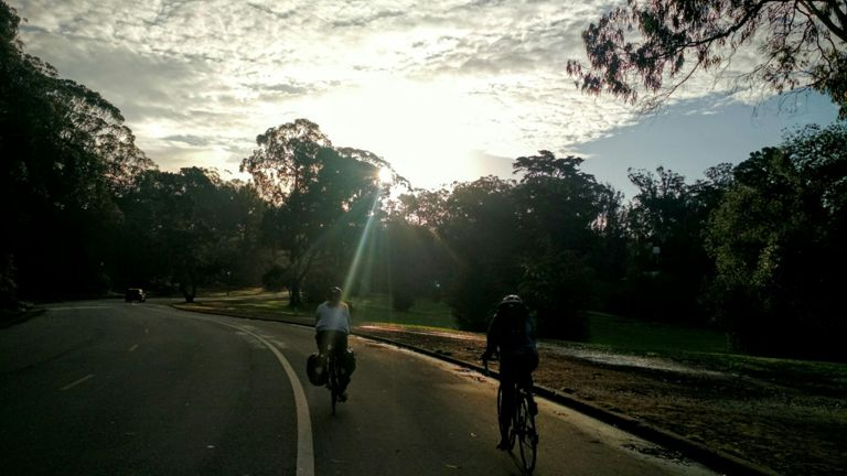 Cruising through the park behind a few commuters. I love the sun coming through the trees in the morning.