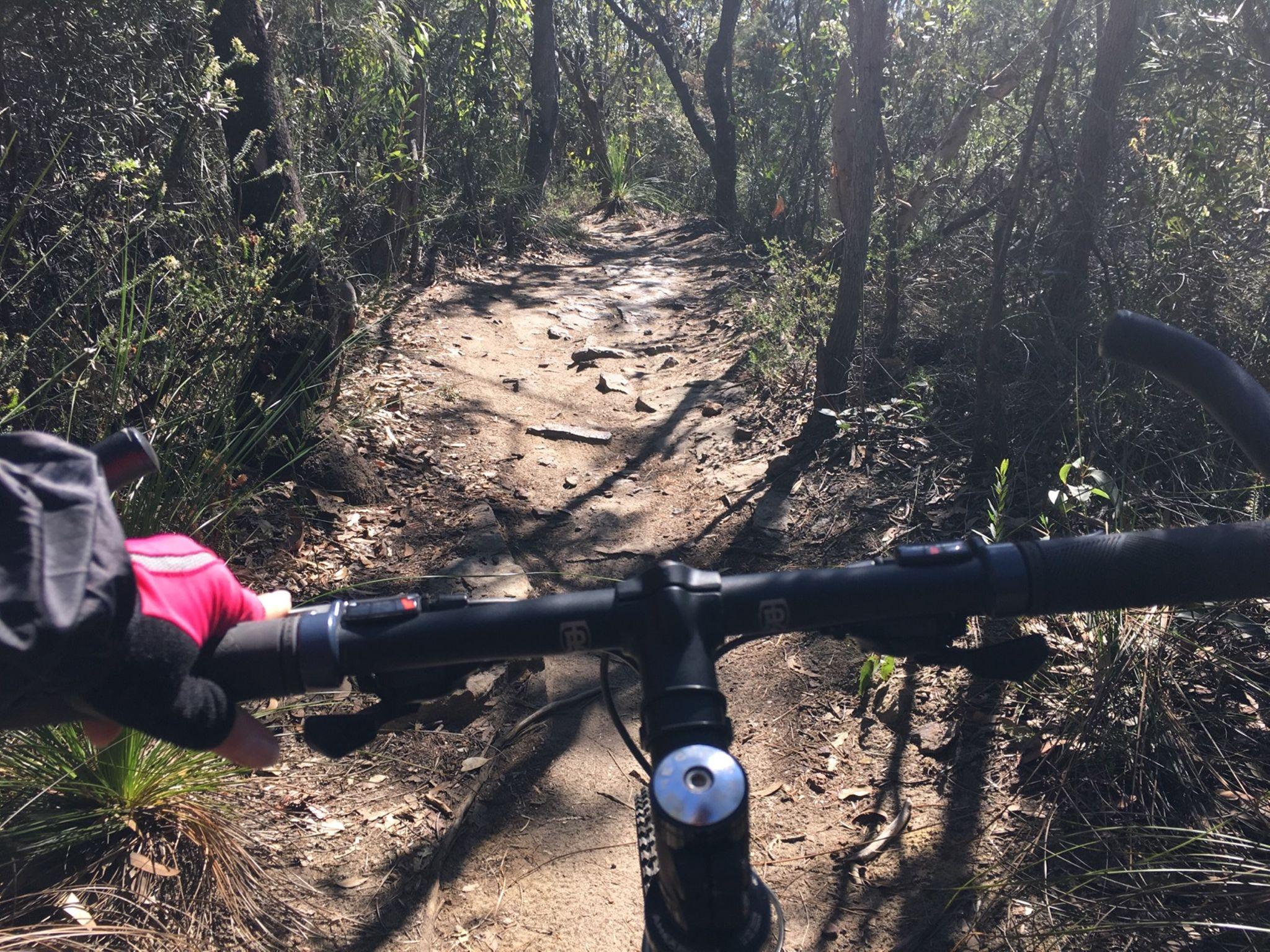 Strava Cyclist Profile Dana W