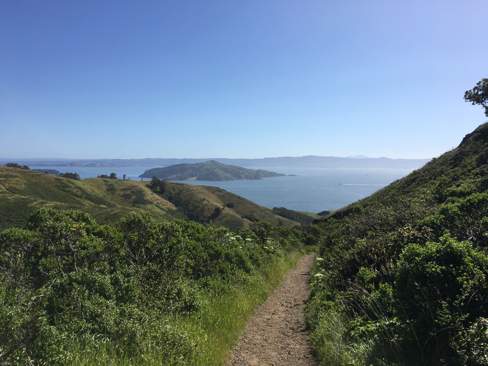 The trail back to SF