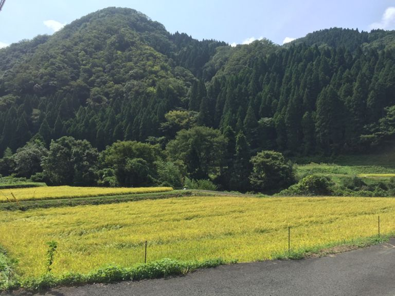 Ride   2016-09-11_ride1h58m25s49_84km