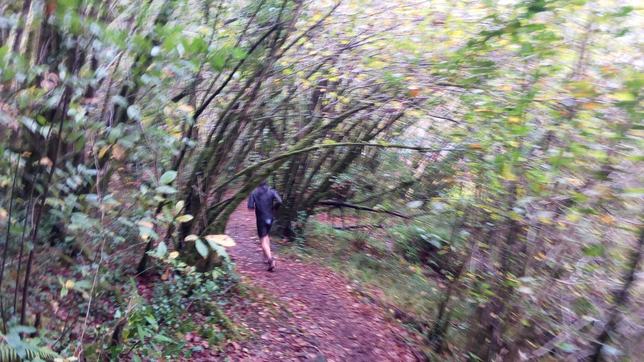 corredor diante miña correndo ao longo do Eume. km 14