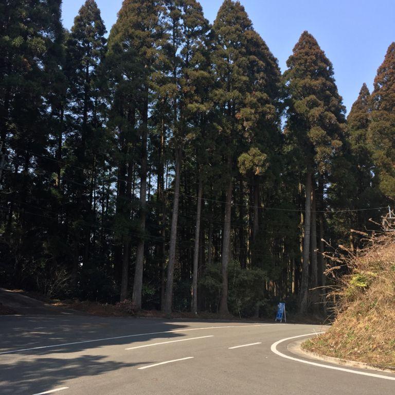 Ride | 2017-03-07_ride1h32m40s38_19km